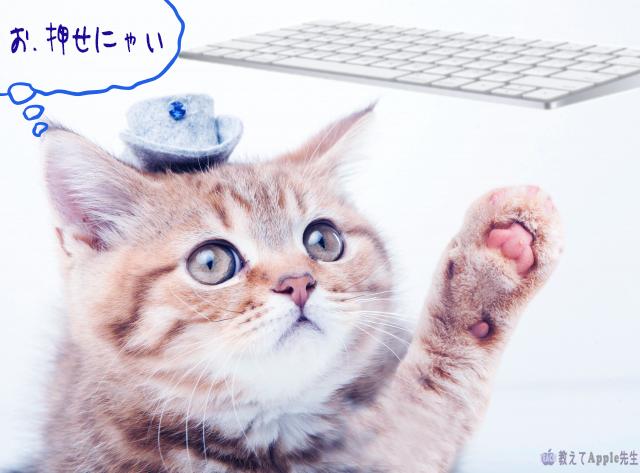 【Mac】キーボードが反応しない時 最初にチェックするたった1つのところ