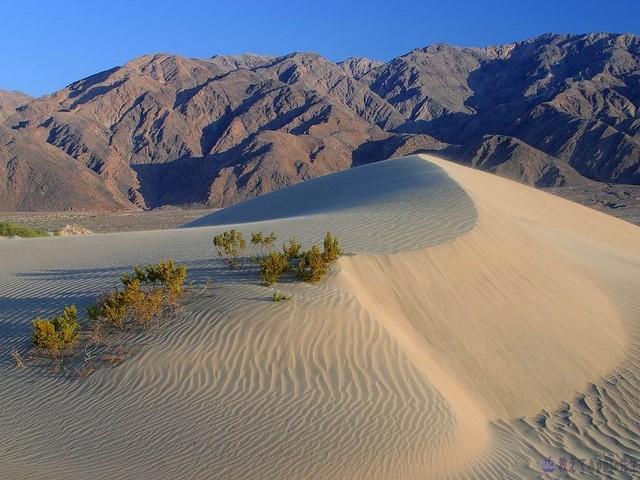 米国 加州 Mojave国立自然保護区
